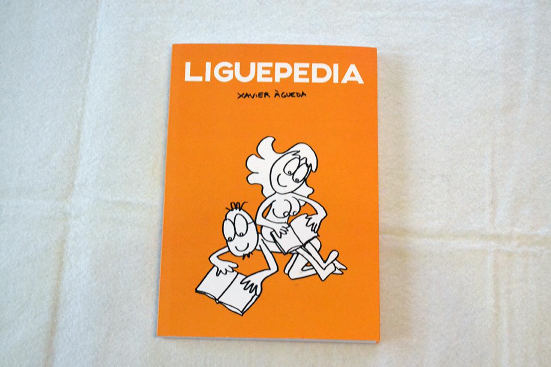 Imagen galeria La liguepedia galeria 0