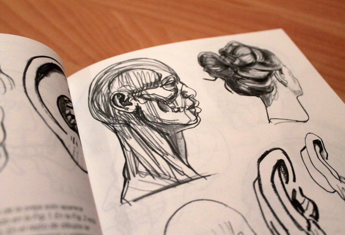 Análisis libro - Anatomía artística