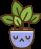 Mascota filtros simples momoko