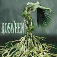ROSWHEN, análisis de la novela de Rosy Sarmiento