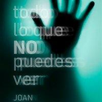 Análisis de Todo lo que no puedes ver, de Joan Llensa